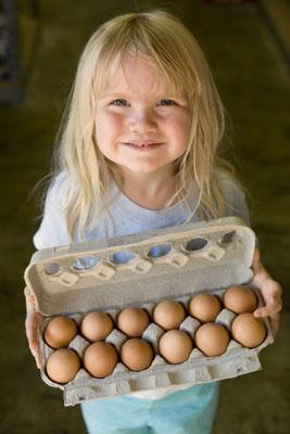 tracker-university-egg