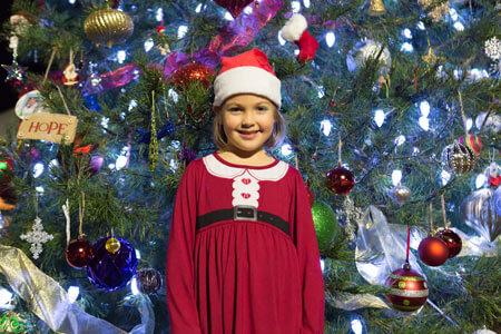 MLF_Tree_120515_fo3a4945